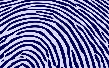 Fingerprint of Marriage: Biblical Design, No Ambiguity